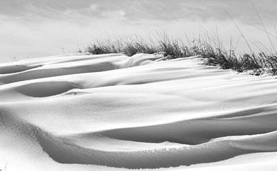Indiana Landscapes Photograph - Indiana Snow by Michael L Kimble