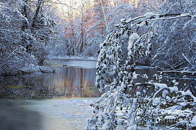 Photograph - Indianas First Snow 2015 by David Arment