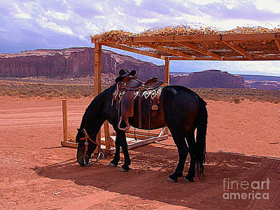 Indian's Pony In Monument Valley Arizona Art Print by Merton Allen