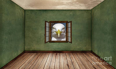 Photograph - Indignant Seagull Interior Design by Terri Waters