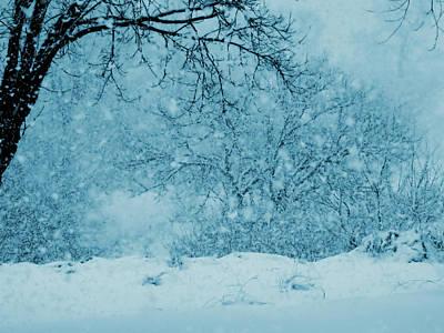Photograph - Indigo Blue Winter Dream by Mary Wolf