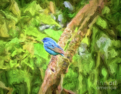 Photograph - Indigo Bunting Abstract Art by Kerri Farley