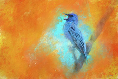 Photograph - Indigo Bunting Summer Song by Jai Johnson