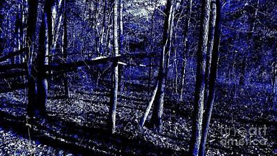 Photograph - Indigo Forest by Rachel Hannah