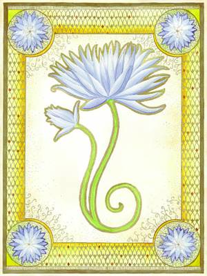 Indigo Lily Art Print by Erin M R Flores