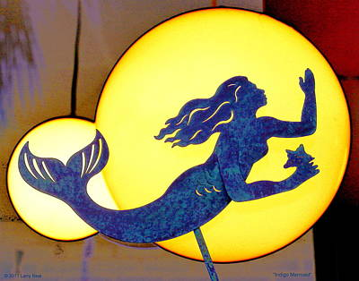 Photograph - Indigo Mermaid by Larry Beat