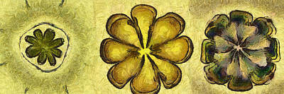 Induce Distribution Flower  Id 16165-033937-06650 Art Print