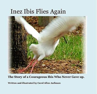 Photograph - Inez Ibis Flies Again by Carol Allen Anfinsen