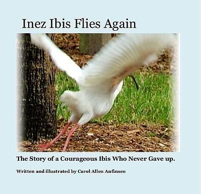 Photograph - Inez Ibis Flies Again by Carol Allen Anfinsen