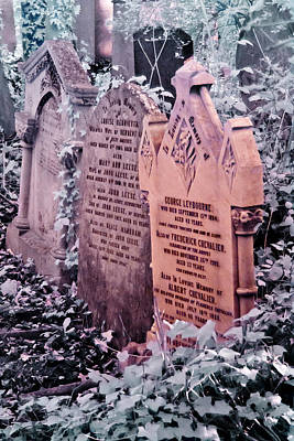 Music Hall Stars At Abney Park Cemetery Art Print by Helga Novelli