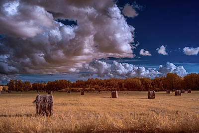 Infrared Haybales Art Print by Paul Freidlund