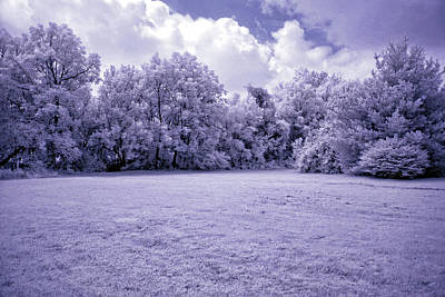Photograph - Infrared In Glasgow Ky by Amber Flowers