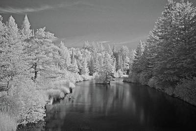 Photograph - Infrared In July 6015 by Michael Peychich