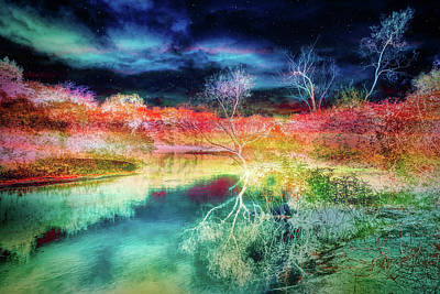 Mixed Media - Infrared Landscape Reflections by Lilia D