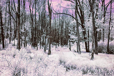 Surrealism Royalty-Free and Rights-Managed Images - Infrared Magenta by Anthony Sacco