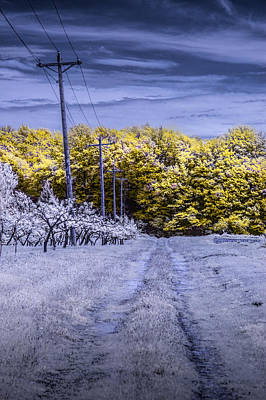 Photograph - Infrared Orchard Road Landscape In Blue And Yellow by Randall Nyhof