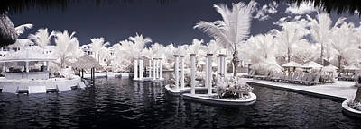 Tropical Photograph - Infrared Pool by Adam Romanowicz