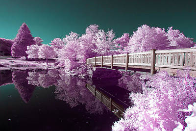 Photograph - Infrared Reflections by Brian Hale