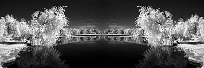 Infrared Reflections Art Print