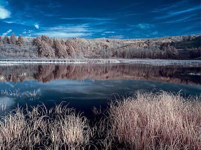 Photograph - Infrared Reflections On Dry Lagoon by Greg Nyquist
