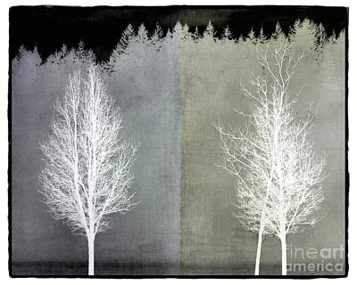 Digital Art - Infrared Trees With Texture by Patricia Strand