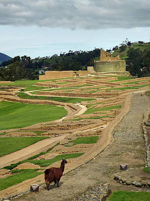 Photograph - Ingapirca Incan Ruins 22 by Jeff Brunton