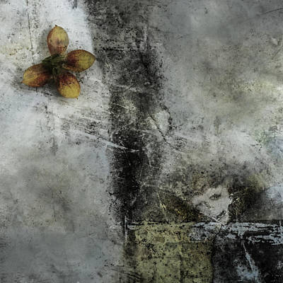 Photograph - Ingen Tittel by Viggo Mortensen