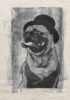 Funny Dog Drawing - Inky Pug by Edward Fielding