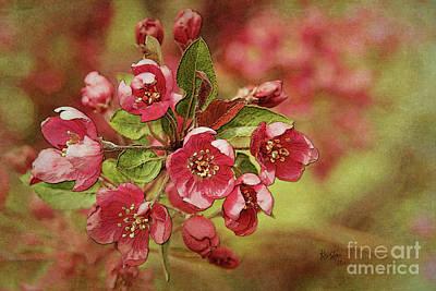 Digital Art - Inner Beauty Of Spring by Krista-