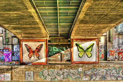 Photograph - Inner City Butterflies by David Birchall