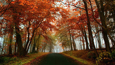 Photograph - Inner Line Road At Valley Forge by Rima Biswas