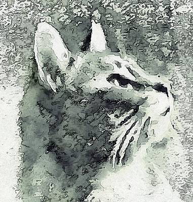 Photograph - Inquisitive Cat Gray Scale by Dorothy Berry-Lound