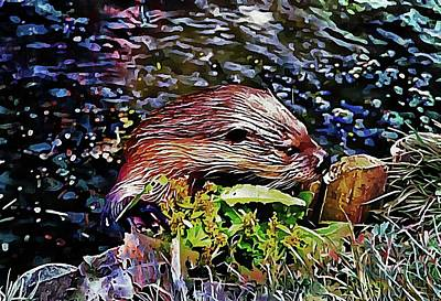 Digital Art - Inquisitive Otter by Dorothy Berry-Lound