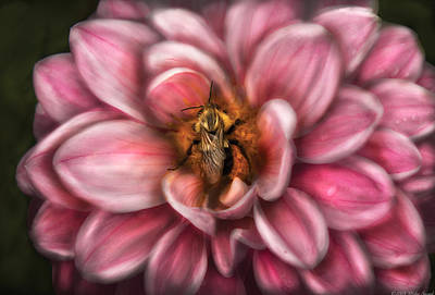 Insect - Bee - Center Of The Universe  Art Print by Mike Savad