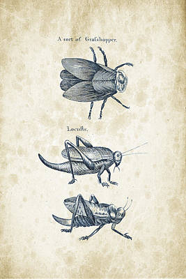 Animals Digital Art Royalty Free Images - Insects - 1792 - 08 Royalty-Free Image by Aged Pixel