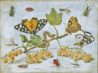 Insects Crawling Art Print