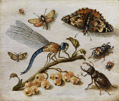 Grasshopper Painting - Insects, Currants And Butterfly by Jan van Kessel