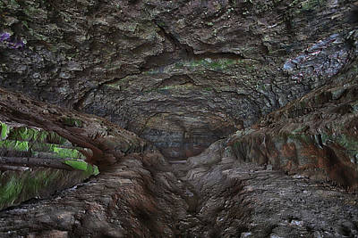 Photograph - Inside Cave-in-rock by Susan Rissi Tregoning