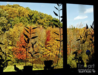 Inside Looking Outside At Fall Splendor Art Print by Carol F Austin