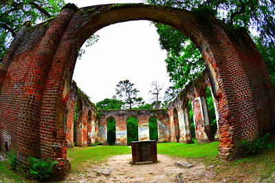 Photograph - Inside Old Sheldon Church Ruins by Lisa Wooten