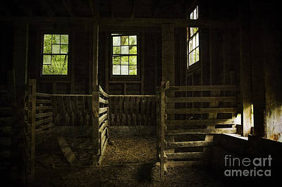 Photograph - Inside The Hog Barn by Debra Fedchin