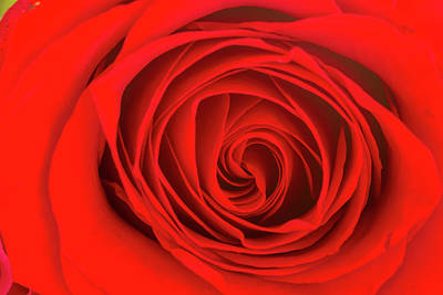 Photograph - Inside The Red Rose by Teri Virbickis