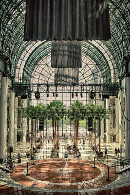 Photograph - Inside The Winter Garden by Cate Franklyn
