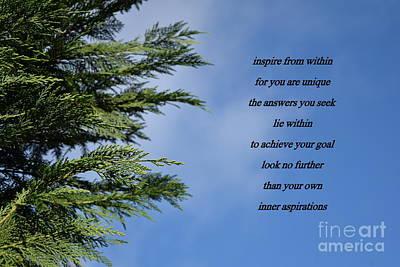 Staff Picks Judy Bernier - Inspiration by Anita Goel