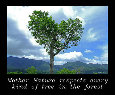 Photograph - Inspirational-mother Nature by Brian Pflanz