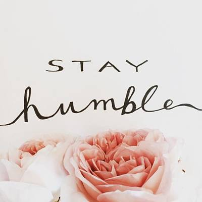 Sketch Photograph - Stay Humble by Nancy Ingersoll