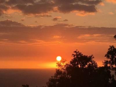 Photograph - Intense Sunset by Karen Nicholson