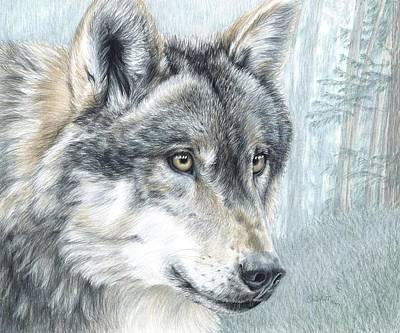 Drawing - Intent Eyes by Carla Kurt