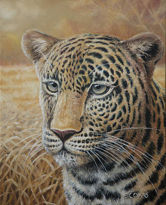 Painting - Intentions - Leopard by Christopher Cox