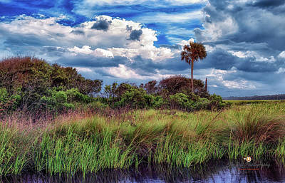 Photograph - Intracoastal Autumn by Joedes Photography